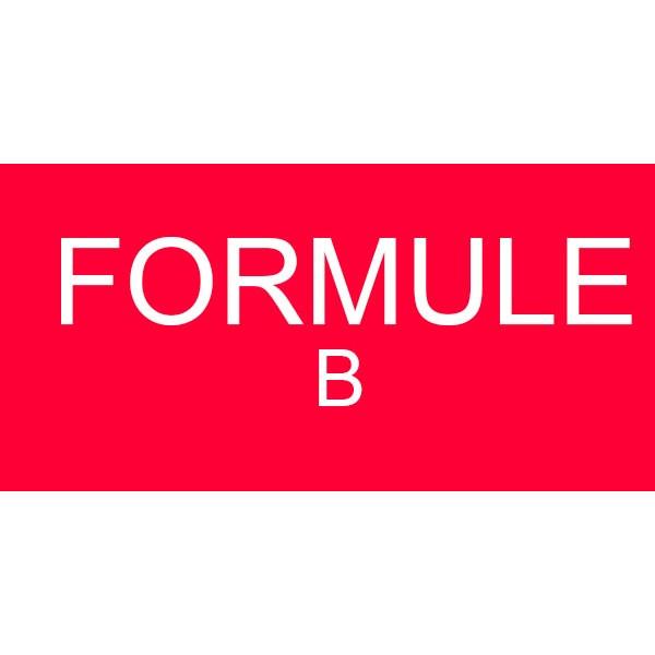 Formule B